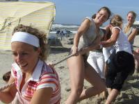 Wie is De Rat Op Het Strand?